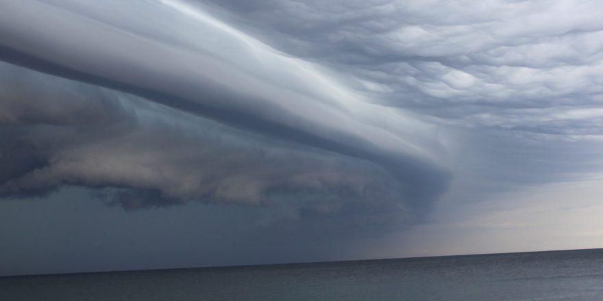 cropped-grebe-storm-22.jpg